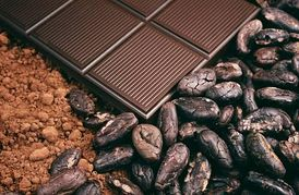 Cocoa powder, chocolate and roasted cocoa beans